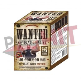 WANTED 363-2